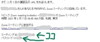 zoom-b05.jpg