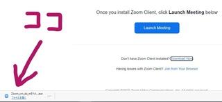 zoom02.jpg